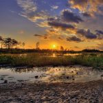 loxahatchee-slough-wetlands-everglades-sunset-palm-beach-gardens-florida-hdr-panorama_副本