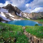 Olympic-National-Park_副本